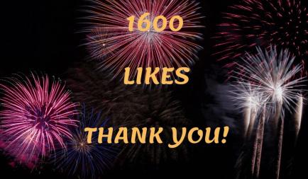 1600 Likes on Facebook